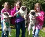 Girls walking and loving on the pugs spring 2011